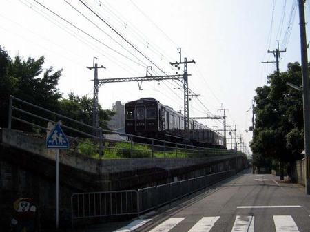 01_kami_katura_new01