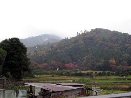 2006_momiji03