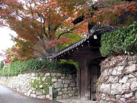2006_momiji05