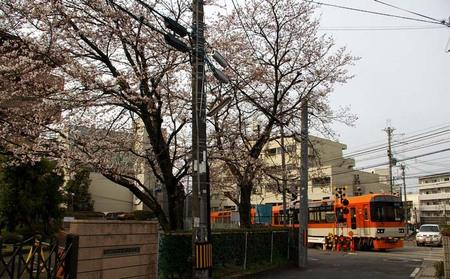 2008_spring01