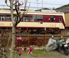 2008_spring02