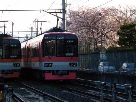 2008_spring06