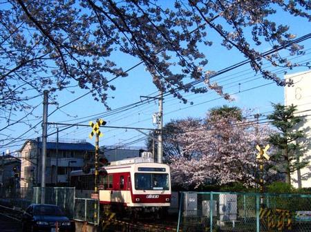 2008_spring07