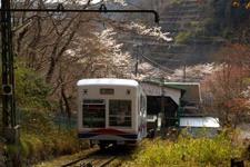 2008_spring09
