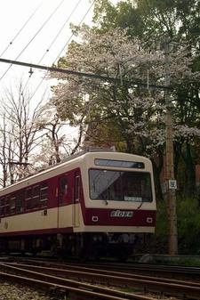 2008_spring11