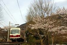 2008_spring12