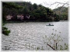 2008_spring20