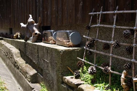 Nara2008summer07