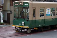 2008_momiji04
