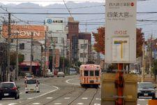 2008_momiji10