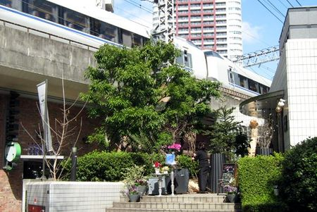 Osaka_pkemon04