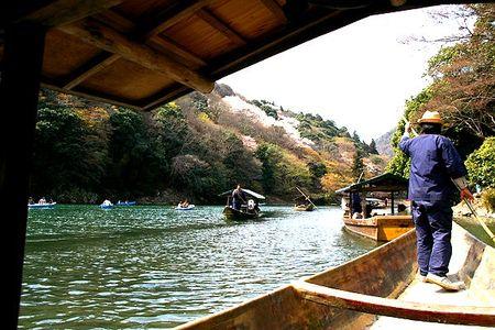 2009_arashi_sakura01
