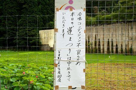 Ohara_momoi01