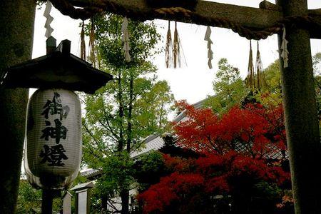 Higashiyama_momiji2009_01