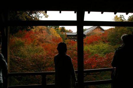 Higashiyama_momiji2009_08