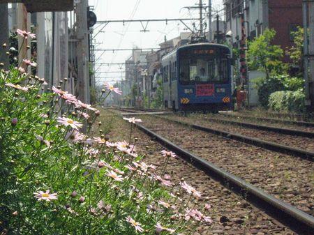 201005_hankai08
