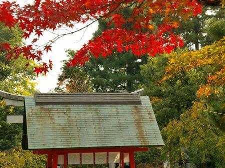 1107_arashiyama04