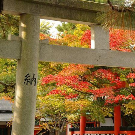 1107_arashiyama05
