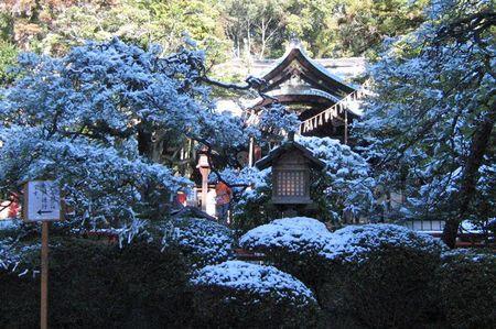 20110110okazaki01