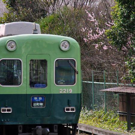 Toufukuji01