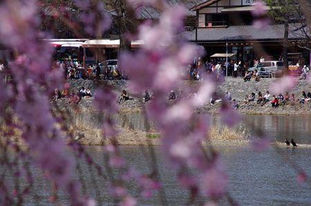 Arashiyama1305