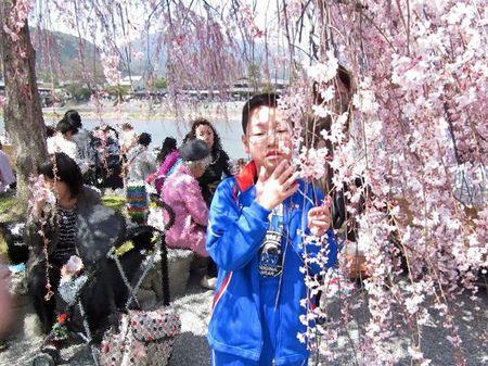Arashiyama1306