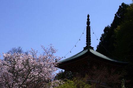 Arashiyama1307