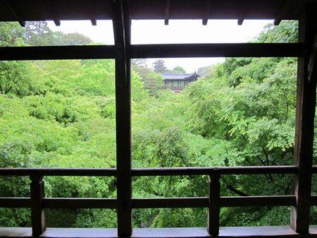 Toufukuji_201105_04