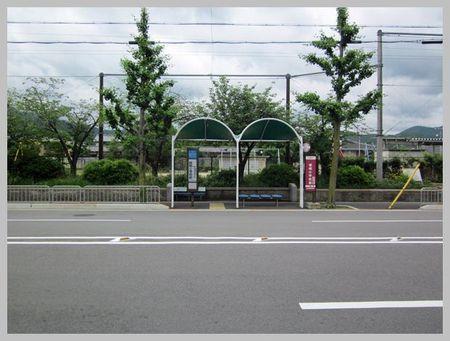 2011summer04