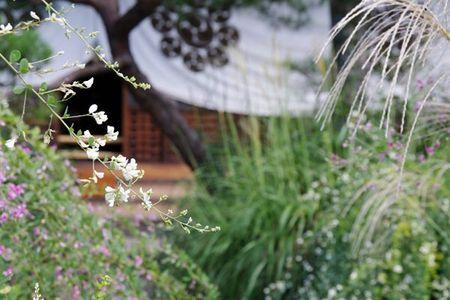 20110924haginotera02_2
