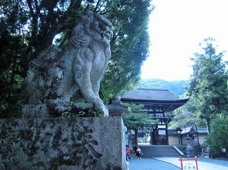 Matsuo01_2