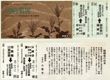 Sagagiku01