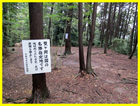 Saga_omuro12