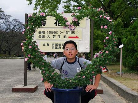 201111shokubutu01
