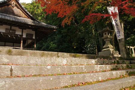 201111_hiraoka04