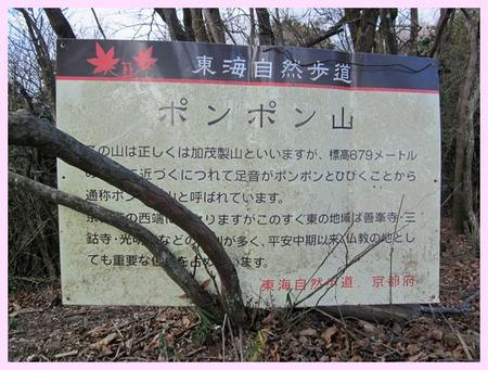 Ponpon_yama10
