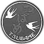 Tsubame1