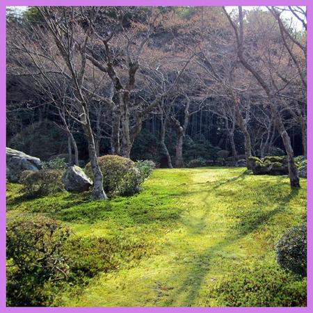 201201syu_ichi03