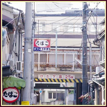 Honmachi43