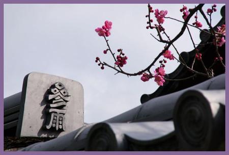 201203daitokuji15