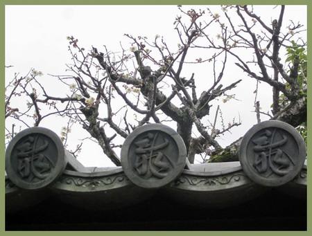 201203daitokuji16