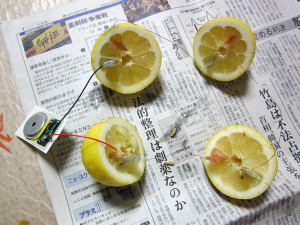 Lemon_battery02