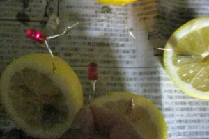 Lemon_battery05