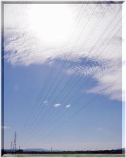 201210fushimi08