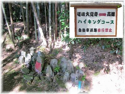 201211arashiyama03