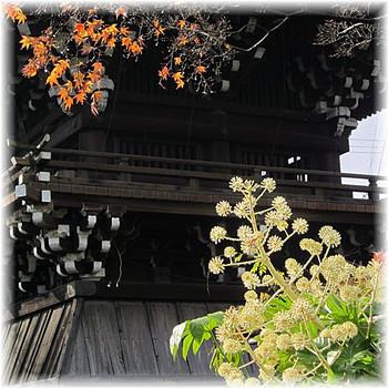 201212_1nishijin14