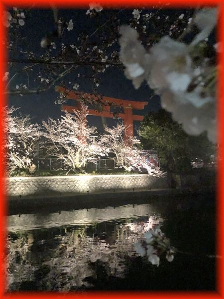 201904_kyoto01