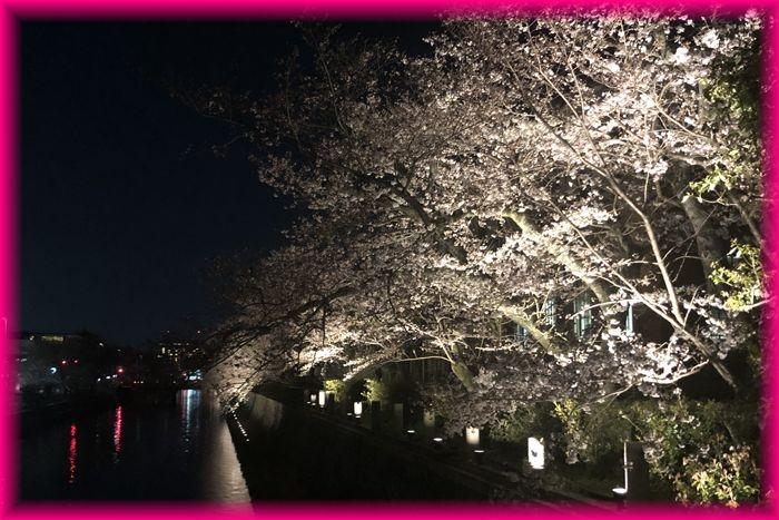 201904_kyoto03