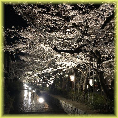 201904_kyoto08