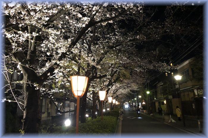 201904_kyoto09